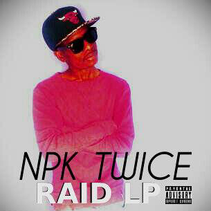 NPK TWICE RAIDLP